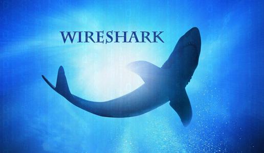 wireshark 00
